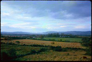 Harvesting near Carndonagh, 6/10/1962